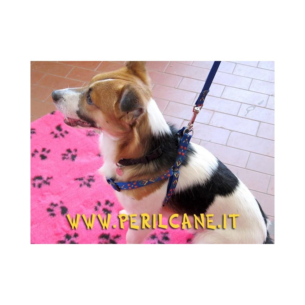 Pettorina nylon blu fantasy per cani taglia medio-piccola