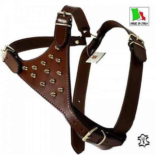 Pettorina  in cuoio marrone e borchie per cani American stafforshire (Amstaff)
