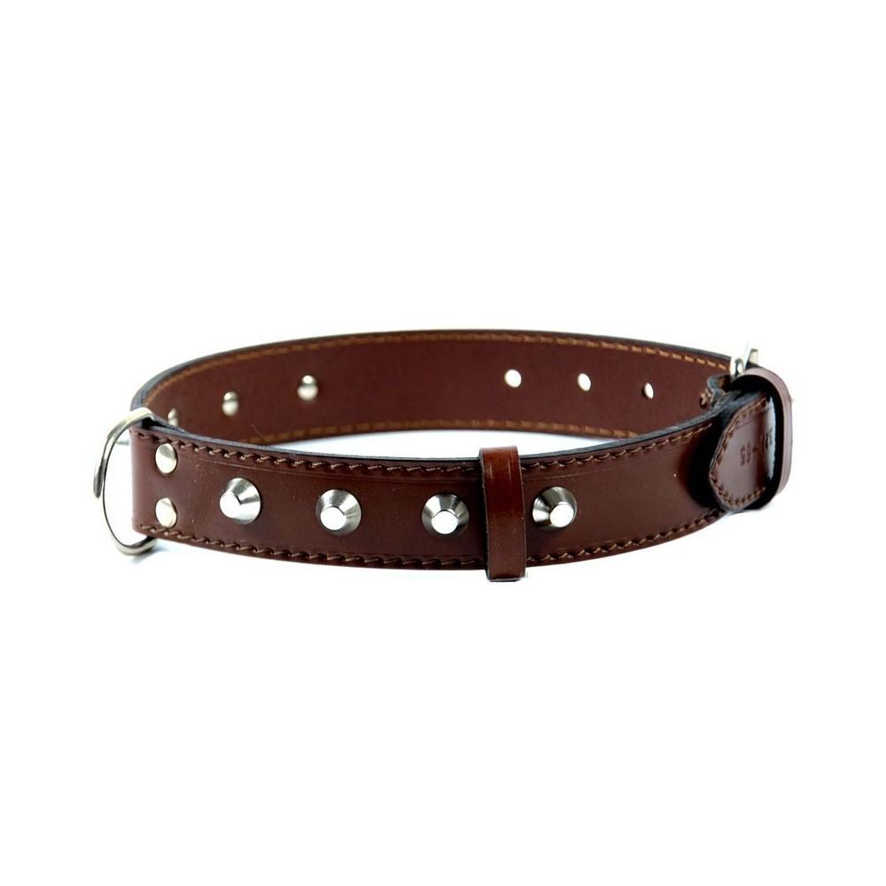 Collare in pelle con borchie per cani medio grandi
