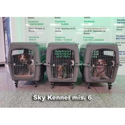 Trasportino Sky Kennel Petmate trasporto cani in aereo